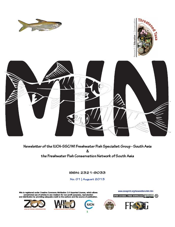 MIN newsletter cover