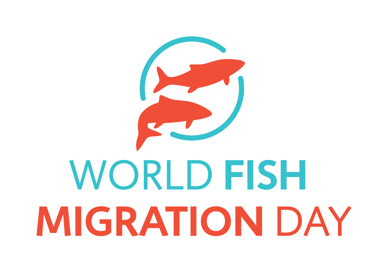 Freshwater fish conservation - World Fish Migration Day 2018
