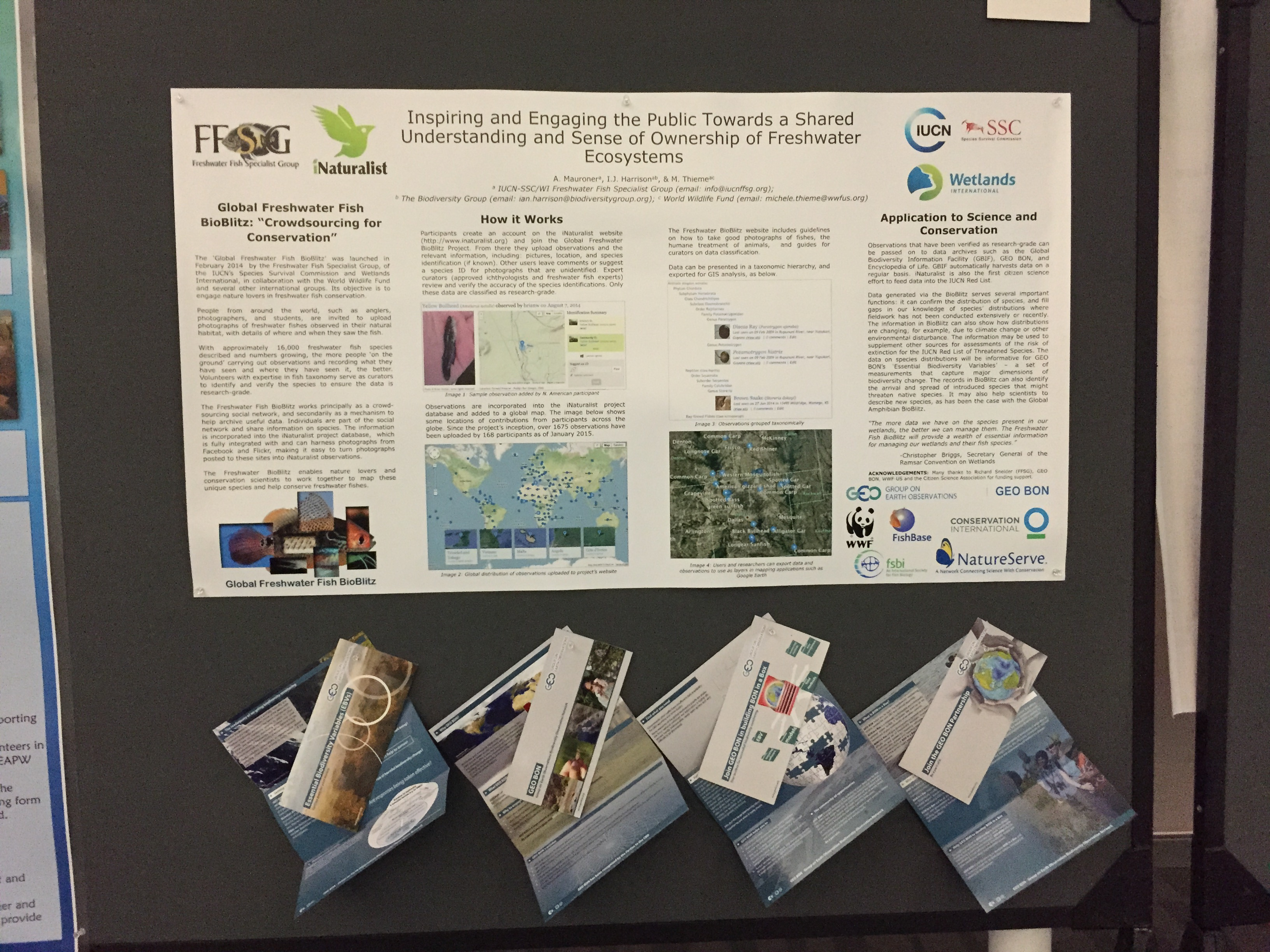 Freshwater fish conservation - Ffsg At Citizen Science Conference