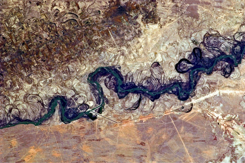 Syrdarya River Floodplain