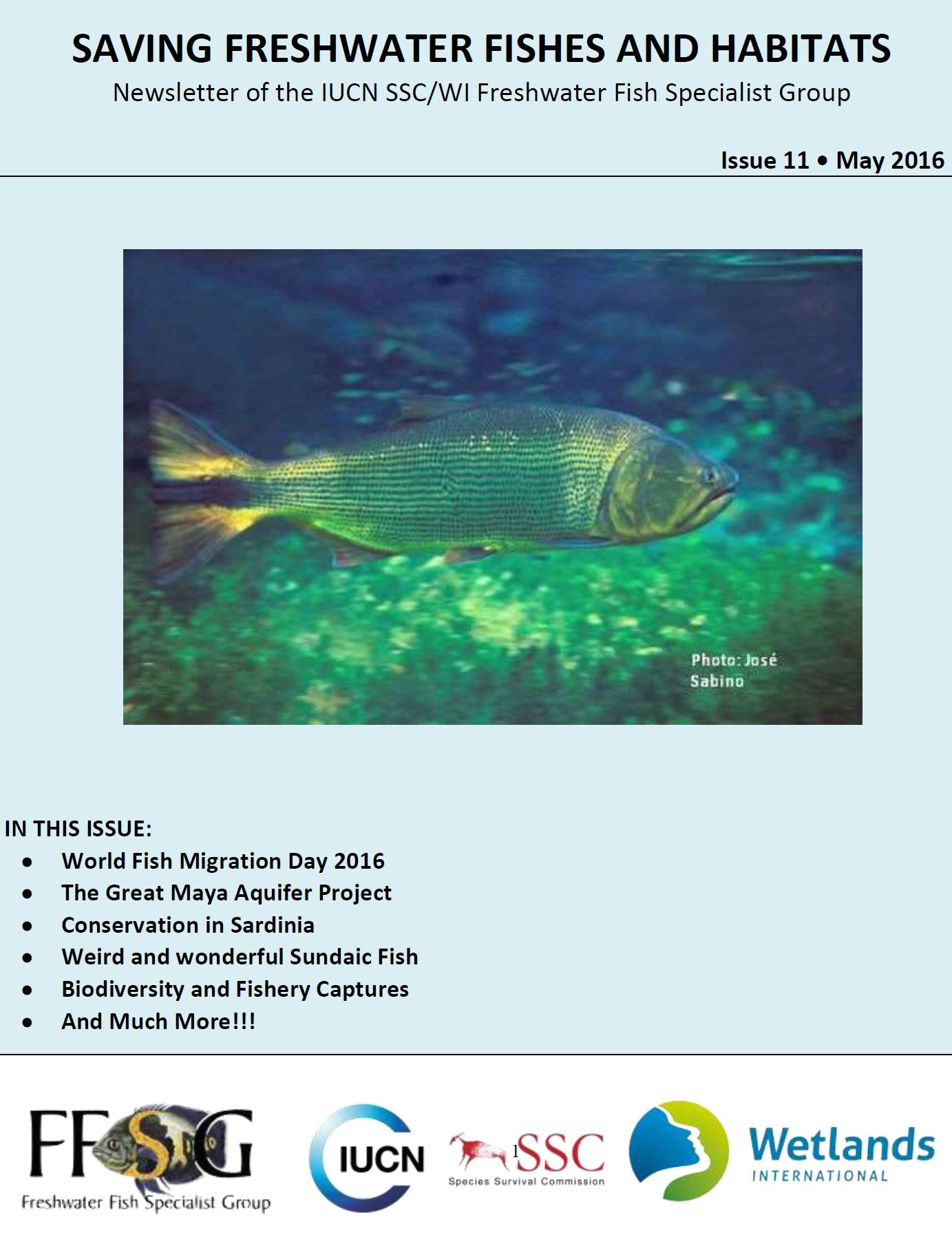Freshwater fish conservation - Saving Freshwater Fishes And Habitats Issue 11 May 2016